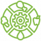 Phytonutrients-icons